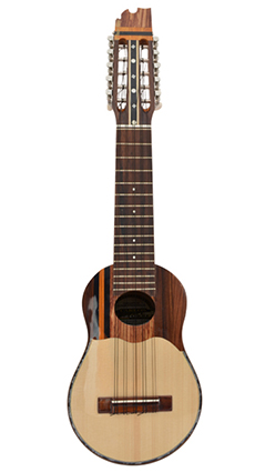 Professional charango with naranjillo wood, jacaranda diapason and elegant lines.